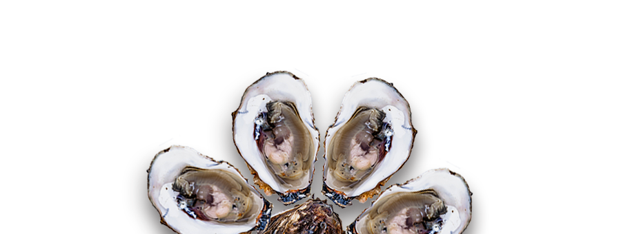 ... oyster slider recipe food republic oysters slider 1 oysters slider 2